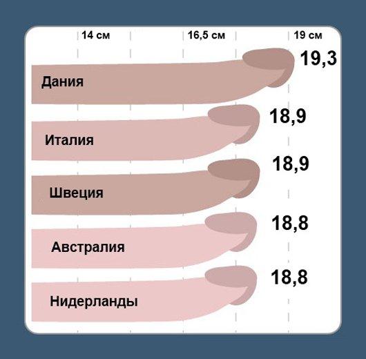 Какой длины и ширины член считается маленьким