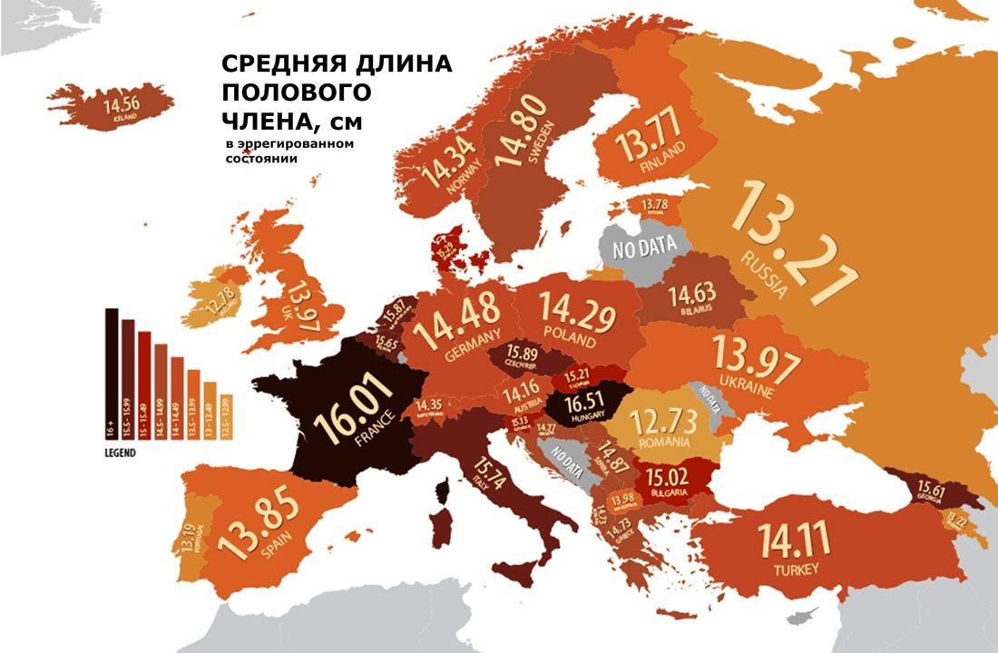 Размер члена мужчины по странам