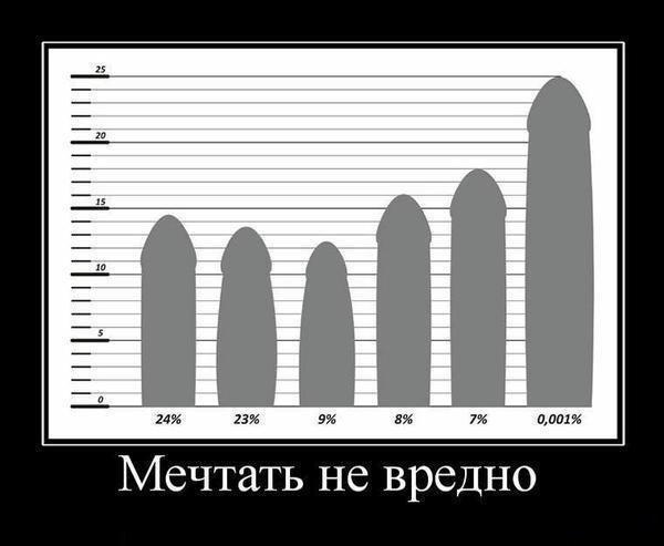 Размеры полового члена