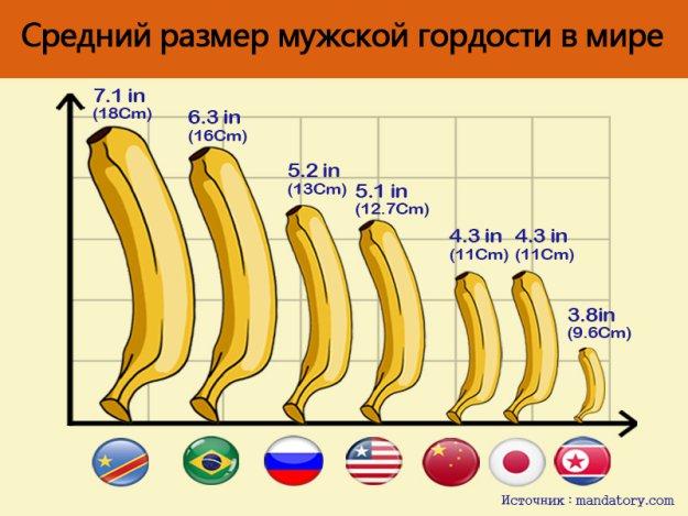 Средний размер члена в мире