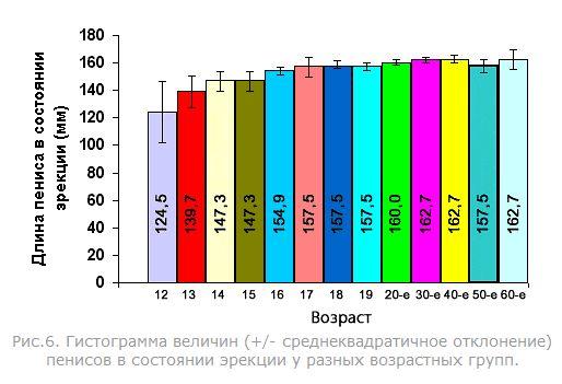 Сколько сантиметров член мужчины по возрасту