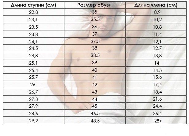 Таблица размеров члена к размеру обуви