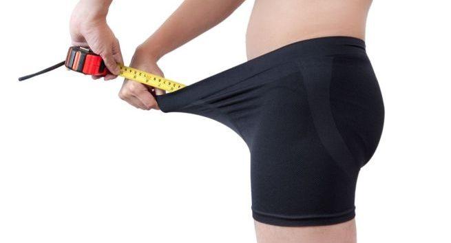 Как измерить толщину члена